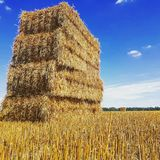 Summer Straw Stack Royalty Free Stock Images