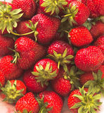 Summer strawberries Royalty Free Stock Photo