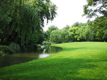 Summer stream and grassland Stock Images