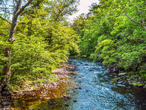 Summer Stream Landscape. A stream passes though this woodlands in rural Warren County New Jersey Stock Photography