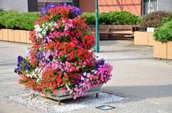 Summer street decoration of the city - pyramid made from particoloured flowers Royalty Free Stock Images