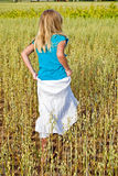 Young girl in wheat field Royalty Free Stock Photo