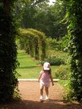 Summer Stroll. Little girl walking in rose garden Stock Photos