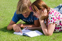 Summer study Stock Image