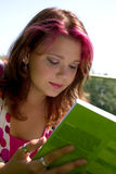 Summer study Royalty Free Stock Images