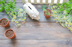 Summer style decorations on a rustic wooden background Royalty Free Stock Photo