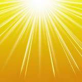 Summer sun. Yellow and orange summer sun background Stock Images