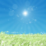 Sun. Summer sun background day grass nature rays sky Royalty Free Stock Images