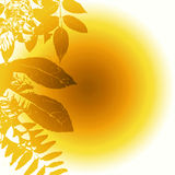 Summer Sun And Leaves vector illustration
