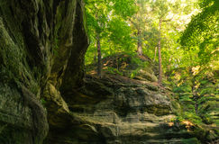 Summer sun lighting the canyon walls. Summer sun lighting the canyon walls in Lonetree Canyon.  Starved Rock State Park, Illinois, USA Royalty Free Stock Photos