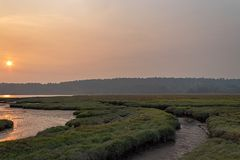 Summer sun over wetlands made hazy by nearby wildfires. Glowing landscape of wetlands in sunset light in late summer near belfair washington in august stock photo