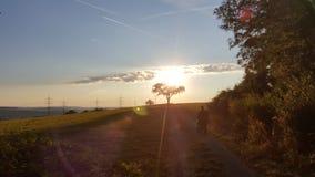 Summer sun. Set in evening Stock Image