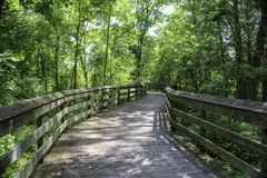 Shaded boardwalk in the woodlands. Summer sunlight and shade on wooden boardwalk. Canawaugus park in Scottsville, NY royalty free stock photography