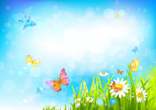 Summer sunny background Stock Images