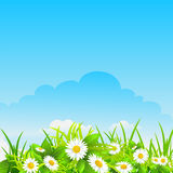 Summer sunny background. With space for text Royalty Free Stock Photo