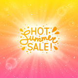 Summer sunny background Stock Photos