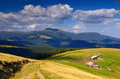 Summer sunny day and high-mountainous farm Royalty Free Stock Photo