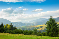Summer sunny day is in mountain landscape, Europe Royalty Free Stock Photography