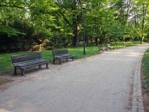 Day in the park. Summer sunny day in the Park Royalty Free Stock Photography
