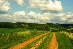 Summer sunny day. Summer in the Bourgogne, France. Royalty Free Stock Photo