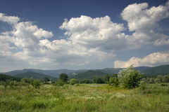 Summer Sunny Landscape. Summer sunny idyllic landscape meadow mountain clouds sky Royalty Free Stock Image