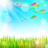 Summer sunny landscape with green grass and colorful kites. Flying in the sky Stock Image