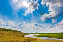 Summer sunny landscape in Russia. stock photos