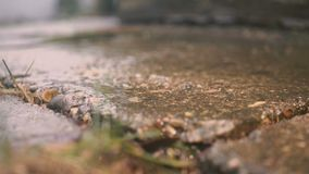 Summer sunny rain. Drops fall from the roof, slow motion. Hd stock video footage