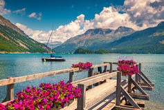 Summer sunny scene on the Silsersee lake Stock Images