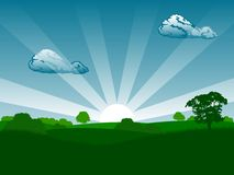 Summer sunrise. Landscape with trees and grass vector illustration Royalty Free Stock Image
