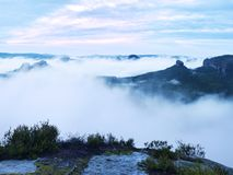 Summer sunrise forest after heavy rain. Beautiful mountain within inversion. Royalty Free Stock Photos