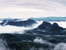 Summer sunrise forest after heavy rain. Beautiful mountain within inversion. Royalty Free Stock Images