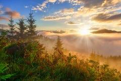 Summer sunrise landscape at mountains. Royalty Free Stock Photos