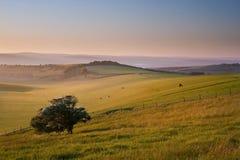 Summer sunrise over countryside landscape. Beautiful sunrise over English countryside landscape in Summer Royalty Free Stock Image