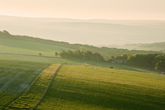 Summer sunrise over English countryside. Beautiful sunrise over English countryside landscape in Summer Royalty Free Stock Photo
