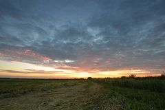Summer sunrise over a field Royalty Free Stock Images