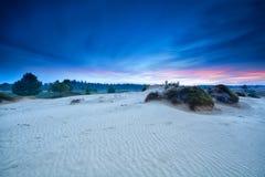 Summer sunrise over sand dunes Royalty Free Stock Image