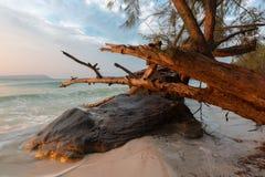 Summer sunrise seascape on tropical island Koh Rong in Cambodia. Summer sunrise seascape on tropical beach with rocks in Koh Rong Island near Sihanoukville Royalty Free Stock Image