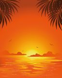 Summer sunset Royalty Free Stock Photos