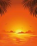 Summer sunset. Beautiful tropical summer sunset background vector illustration