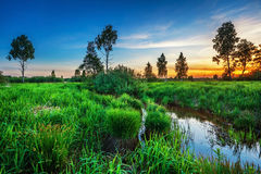 Summer sunset around field and river Royalty Free Stock Image
