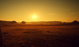 Summer sunset. Beautiful landscape scenery at sunset Royalty Free Stock Photo