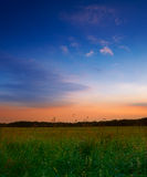 Summer sunset at the countryside Royalty Free Stock Images