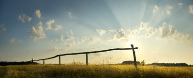 Summer sunset on the field. Royalty Free Stock Photography