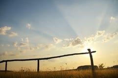 Summer sunset on the field Stock Image
