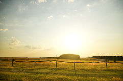 Summer sunset on the field. Stock Photo