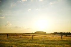 Summer sunset on the field. Stock Photo