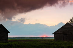 Summer Sunset In The Fields 2. The mist rises on the fields when the air cools down at dusk royalty free stock photos