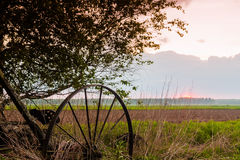 Summer Sunset In The Fields 3. The mist rises on the fields when the air cools down at dusk royalty free stock photo