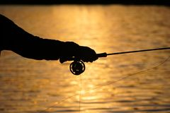 Fly Fisherman's Hand as He Casts During Summer Sunset. Summer fly fishing in at sunset when camping in northern BC Canada. Casting for trout in a freshwater Stock Photos